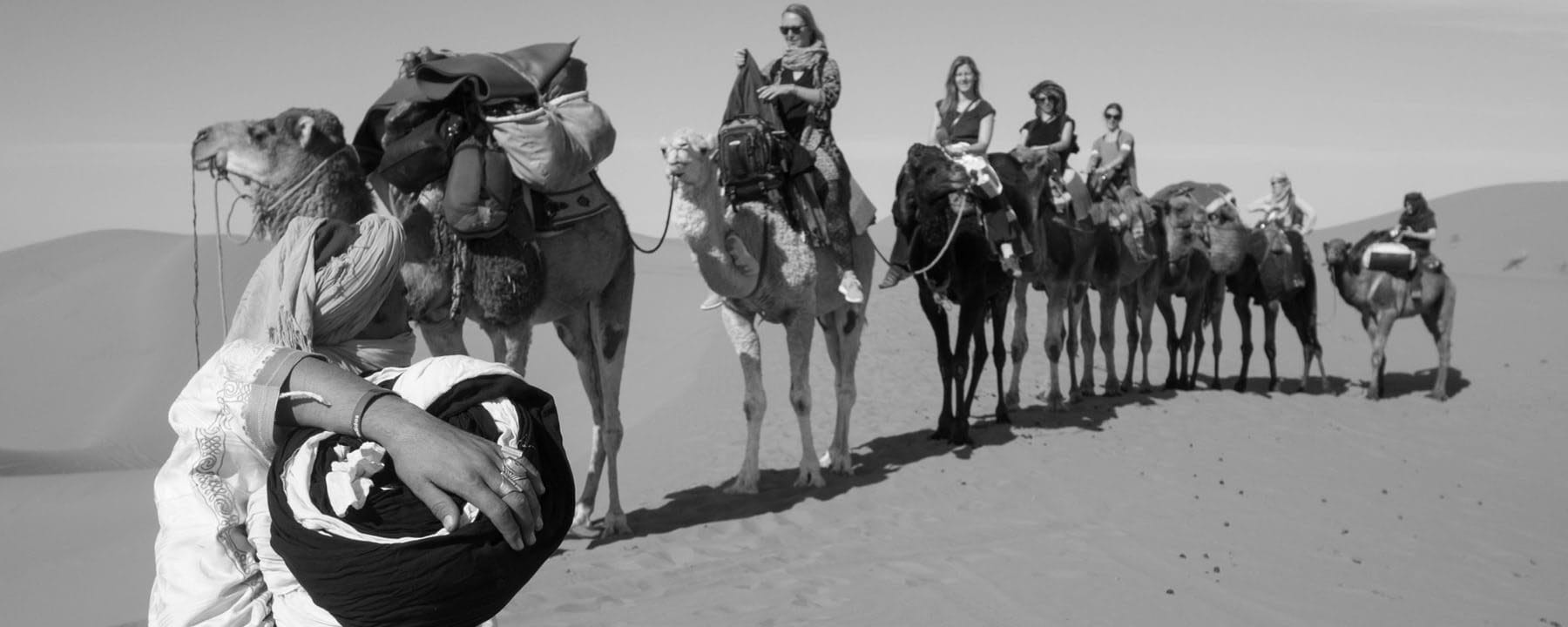 Camel Caravan_Source Pamela Ross