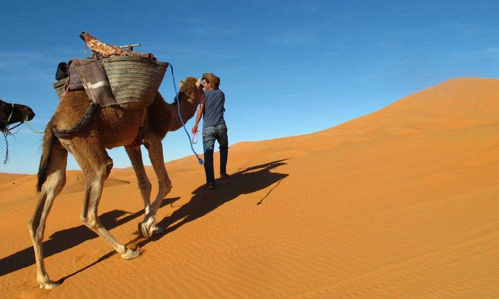 Camel tour Camel trekking Sahara desert Morocco_Source NOSADE