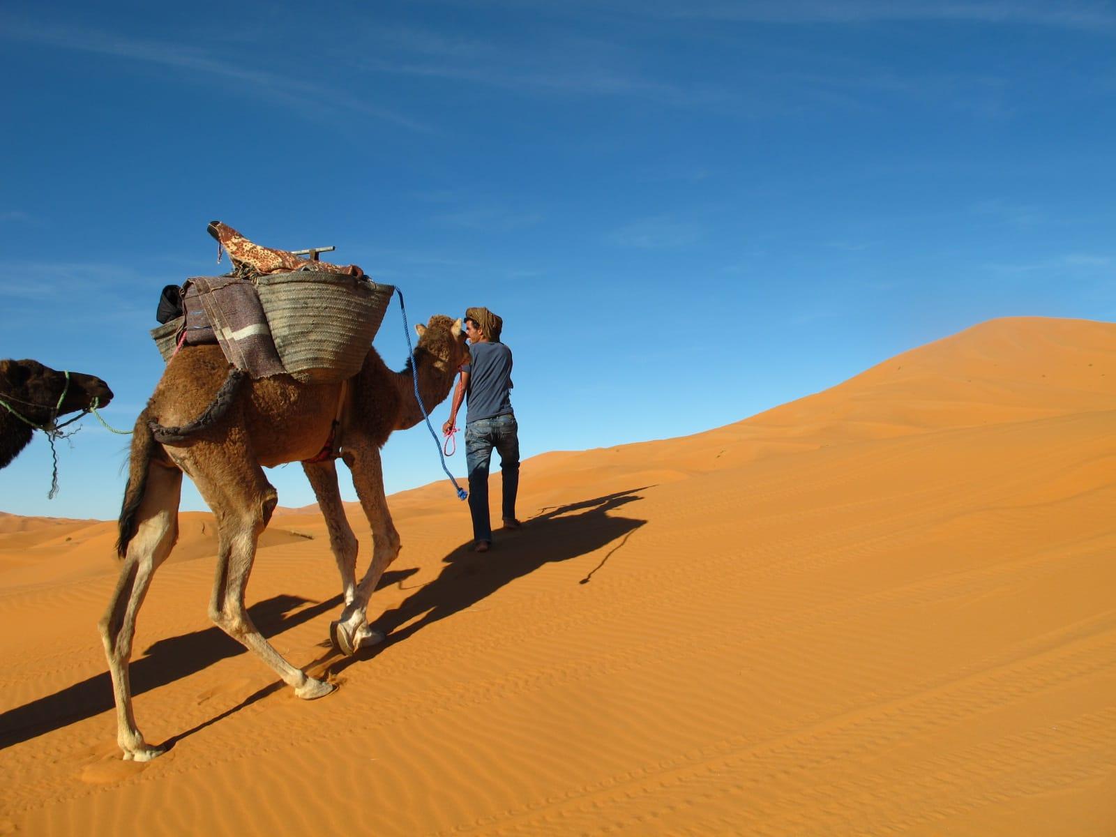 Desert Day Trip Morocco Nosade Com