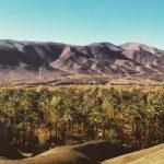 draa-valley-morocco_source-nosade