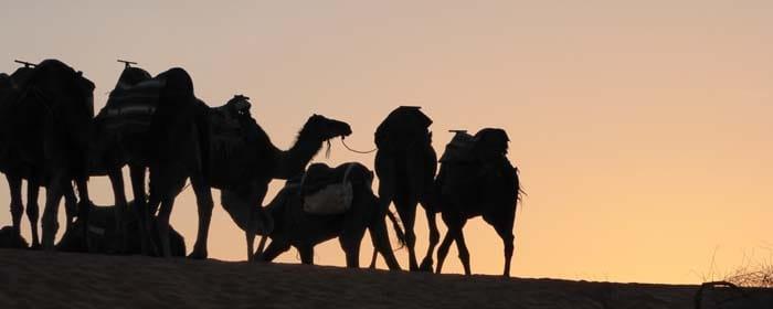Morocco Yoga Round Trip
