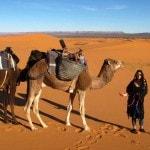 Dromedary Caravan Sahara Desert_Source NOSADE