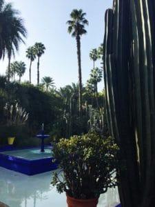 Garden Marrakech_Source NOSADE