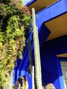 green-marrakech-jardin-majorelle_source-nosade