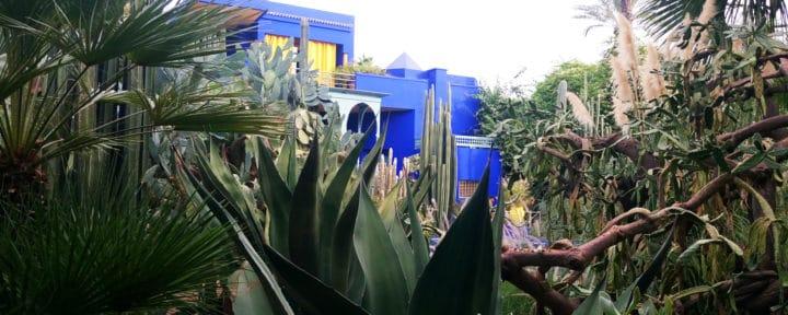 green-marrakech_source-nosade