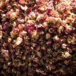 Morocco Roses_Source Pamela Ross
