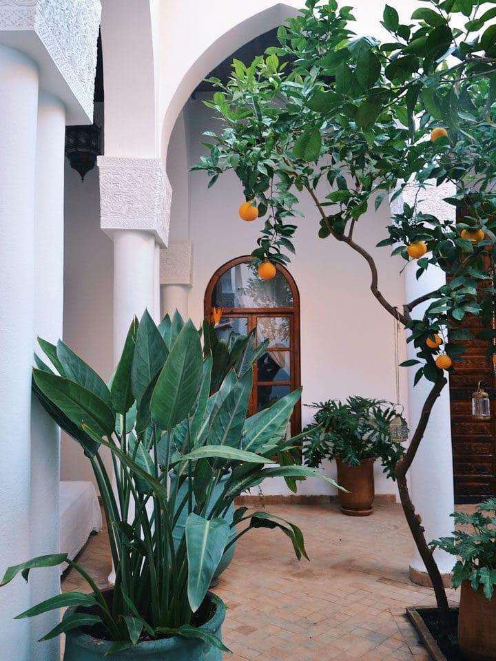 PATIO_NOSADE Venue Marrakech