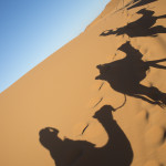 Nosade-Wüste-Kamel-Schatten_Source Katbuzz