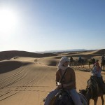 Nosade-Wüste-Kamele-Gruppe_Source Katbuzz