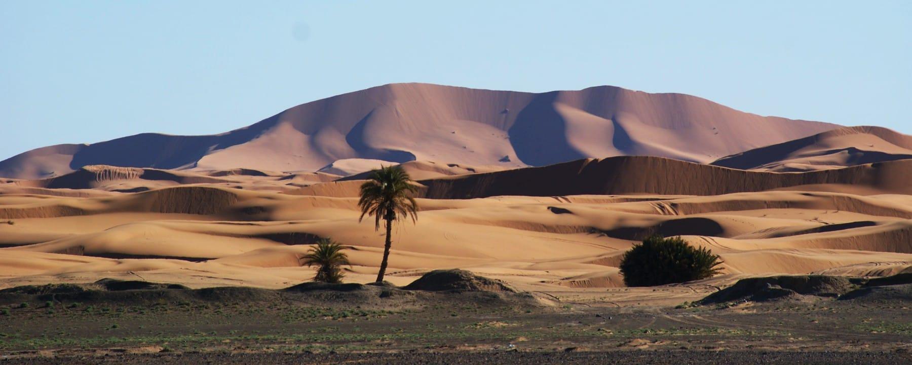 Panorama Sahara desert Erg Chebbi_Source NOSADE