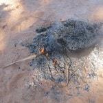 Saf Saf Oasis Berber pizza_Source NOSADE