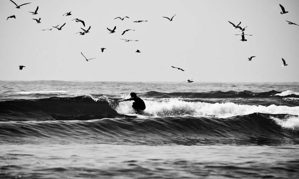 <b>Atlantik Coast</b>