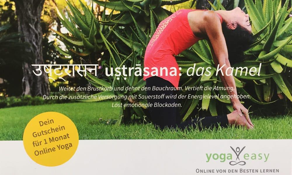 yogaeasy-flyer